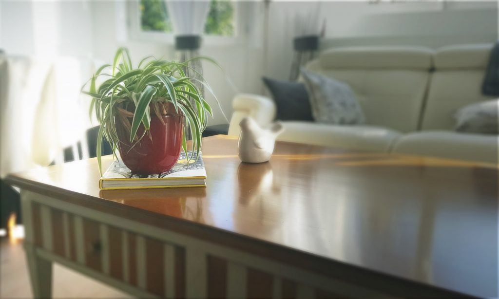 Transformation d'un bureau en habitation